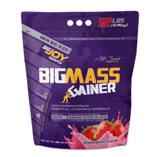 Bigjoy - Bigjoy Bigmass Çilek 5440 g