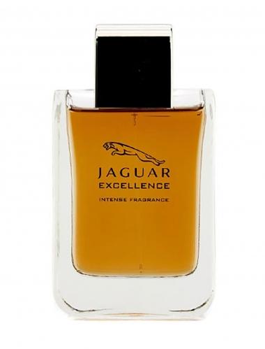 Jaguar - Jaguar Excellence Edp Erkek Parfüm 100 ml