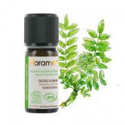 Florame - Florame Organik Aromaterapi Frankincense Günlük (Boswellia Carterii) 5 ml