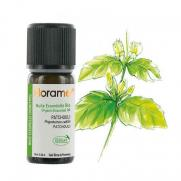 Florame - Florame Organik Aromaterapi Paçuli (Pogostemon Cablin) 10 ml