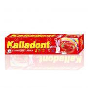 Pavloderm - Kalladont Çocuklar için Çilek Aromalı Diş Macunu 42 ml