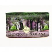Nesti Dante - Nesti Dante Emozioni in Toscana Enchanting Forest 250 gr.